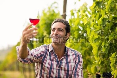 Smiling vintner holding grapes and glass of wine Stock photo © wavebreak_media