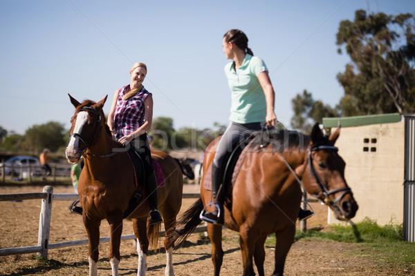 женщины друзей говорить сидят лошади Сток-фото © wavebreak_media