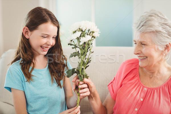 Nonna fiori pronipote famiglia ragazza Foto d'archivio © wavebreak_media