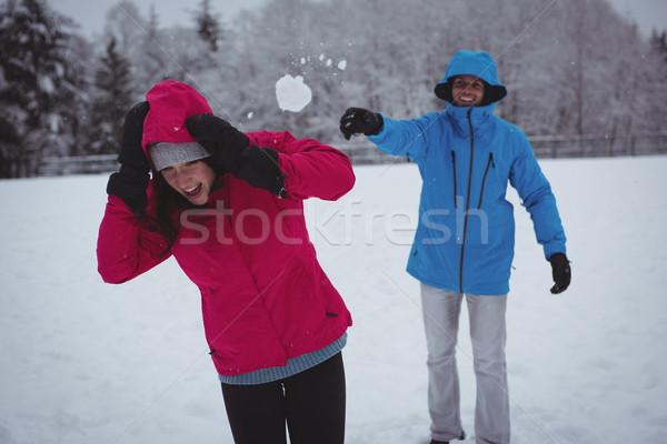 Homem bola de neve mulher árvore feliz Foto stock © wavebreak_media