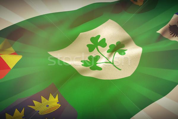 Composite image of flag of the irfu with the centenary logo Stock photo © wavebreak_media
