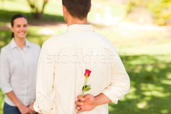 Człowiek oferowanie wzrosła sympatia parku kwiat Zdjęcia stock © wavebreak_media