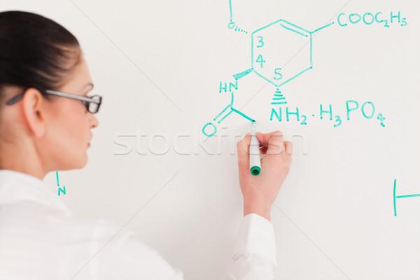 ученого женщину Дать формула лаборатория Сток-фото © wavebreak_media