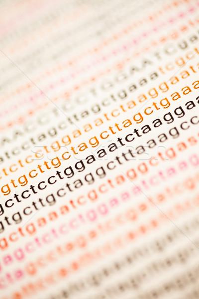 Lista DNS elemzés levelek papír kórház Stock fotó © wavebreak_media