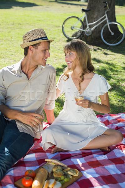 Bonitinho sorridente casal potável vinho branco piquenique Foto stock © wavebreak_media