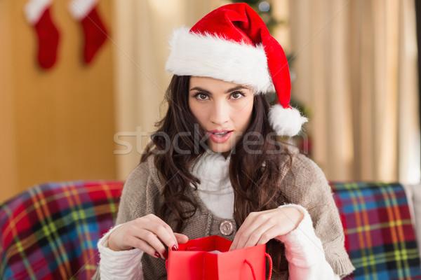 驚いた ブルネット 開設 ギフト 袋 クリスマス ストックフォト © wavebreak_media