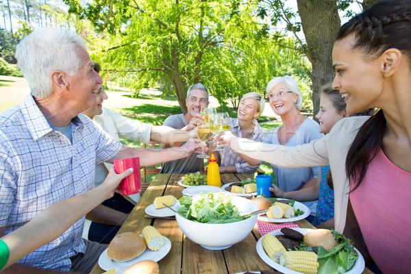 Gelukkig gezin picknick park meisje voorjaar Stockfoto © wavebreak_media