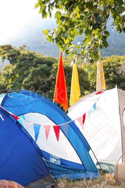Boş müzik festivali yaz Stok fotoğraf © wavebreak_media
