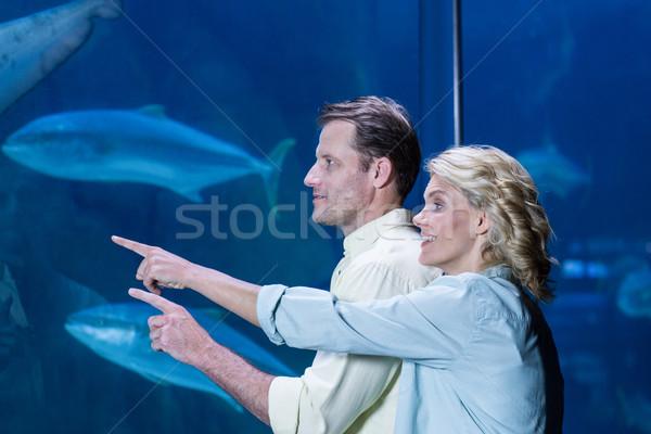 Happy couple pointing a fish tank Stock photo © wavebreak_media