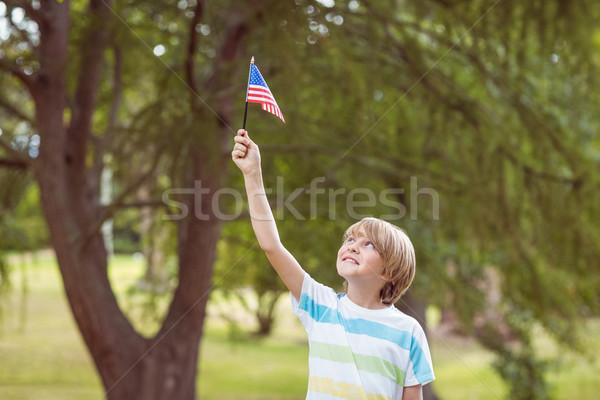 Młody chłopak amerykańską flagę trawy drzew Zdjęcia stock © wavebreak_media