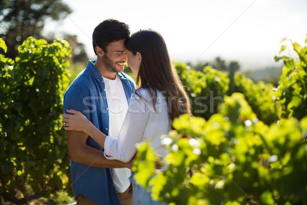 Boldog fiatal pér áll szemtől szembe szőlőskert napos idő Stock fotó © wavebreak_media