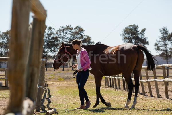 лошади ранчо женщину Сток-фото © wavebreak_media