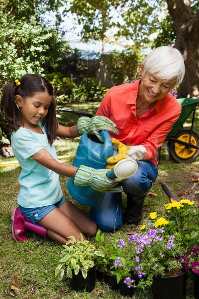 Glimlachend kleindochter grootmoeder planten tuin Stockfoto © wavebreak_media