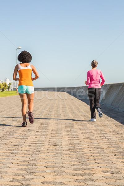 Two sporty women jogging together Stock photo © wavebreak_media