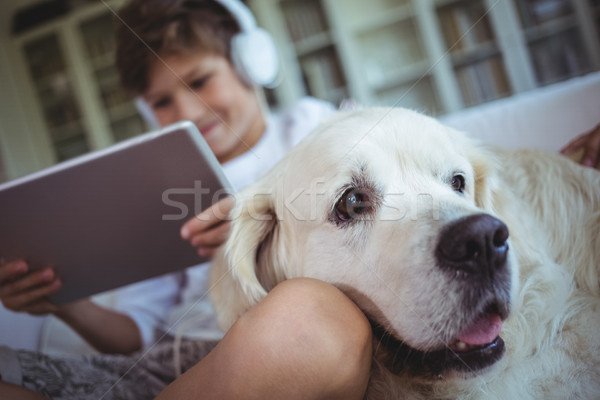 Boy sitting on sofa with pet dog and listening to music on digital tablet Stock photo © wavebreak_media
