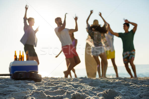 Vrienden dansen wal strand vrouw man Stockfoto © wavebreak_media