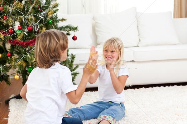 Aranyos testvérek szórakozás karácsony otthon család Stock fotó © wavebreak_media