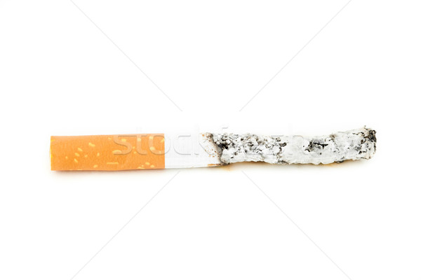 Close up of cigarette put out against a white background Stock photo © wavebreak_media
