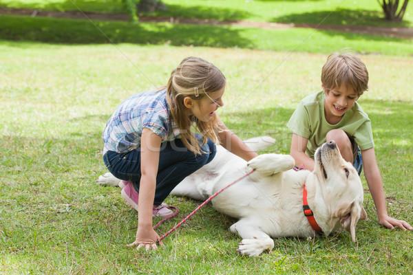 Tam uzunlukta oynayan çocuklar evcil hayvan köpek park iki Stok fotoğraf © wavebreak_media