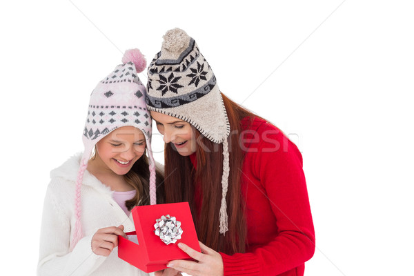 Mother and daughter opening christmas gift Stock photo © wavebreak_media