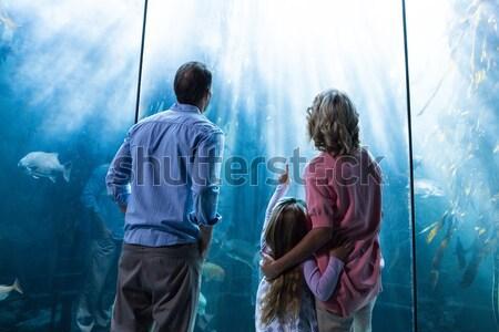 отец указывая рыбы матери дочь глядя Сток-фото © wavebreak_media