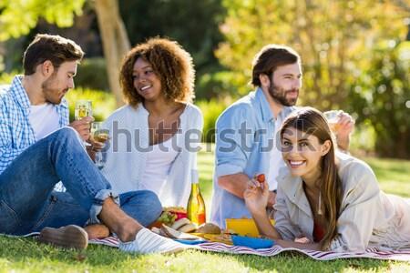 Happy friends in the park having barbecue Stock photo © wavebreak_media