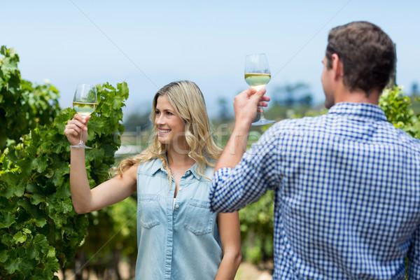Paar wijnglazen wijngaard glimlach liefde Stockfoto © wavebreak_media