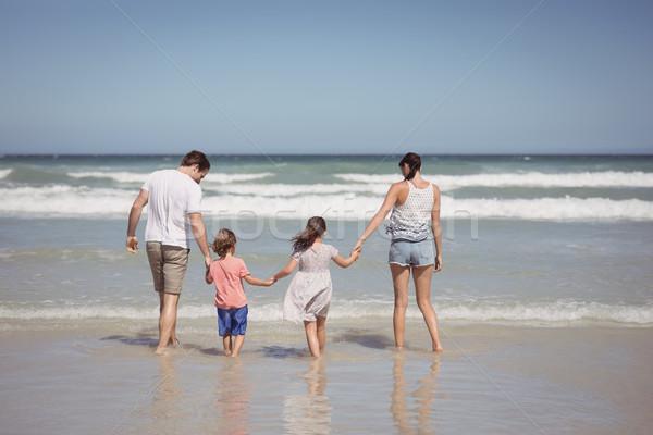 вид сзади семьи , держась за руки берега пляж человека Сток-фото © wavebreak_media