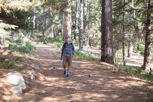 Boldog természetjáró sétál nyom fák érett Stock fotó © wavebreak_media