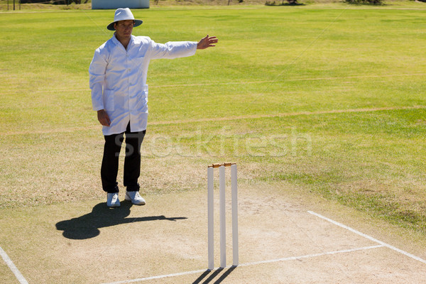 Cricket umpire signalling no ball during match Stock photo © wavebreak_media