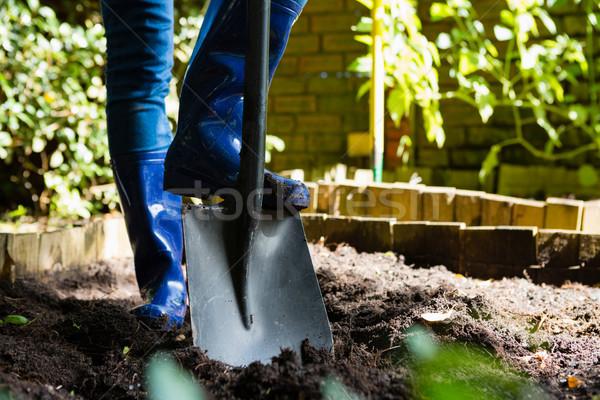 Person shoveling in the garden Stock photo © wavebreak_media