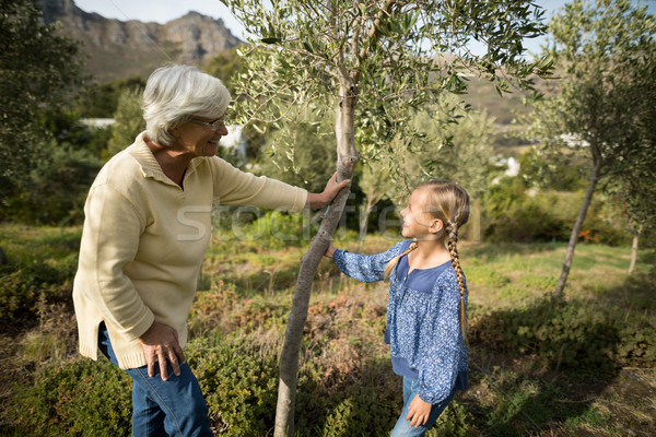 Smiling granddaughter and grandmother interacting with each other Stock photo © wavebreak_media
