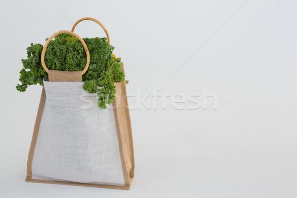 çanta sebze dizayn sağlık yeşil Stok fotoğraf © wavebreak_media