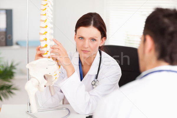 A female doctor is toching a spine Stock photo © wavebreak_media