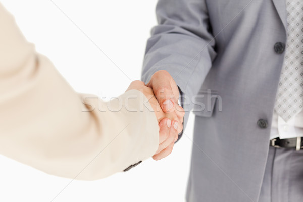 People in suit having an agreement against white background Stock photo © wavebreak_media