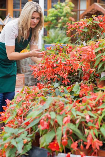 Işçi bitkiler dışında kadın çalışma Stok fotoğraf © wavebreak_media