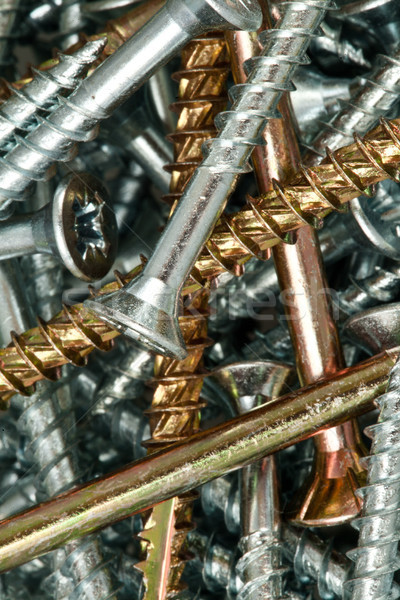 Close-up of golden and silver screws Stock photo © wavebreak_media
