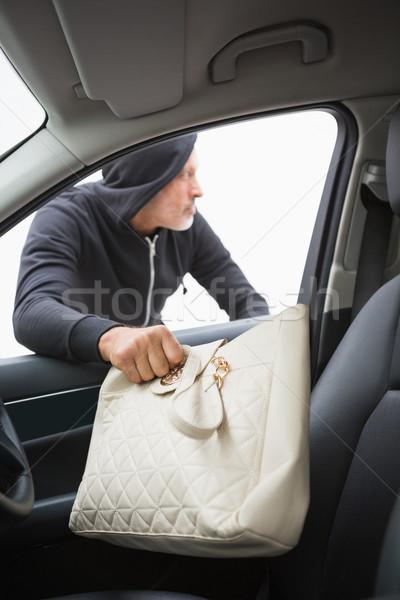 Hırsız araba el çanta şapka Stok fotoğraf © wavebreak_media
