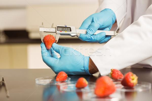Essen Wissenschaftler Erdbeere Universität Schule Stock foto © wavebreak_media