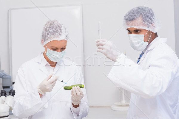 Scientists injecting an courgette  Stock photo © wavebreak_media