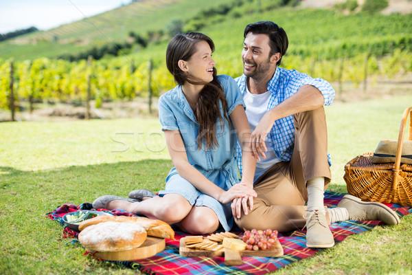 Vrolijk paar vergadering picknickdeken wijngaard voedsel Stockfoto © wavebreak_media