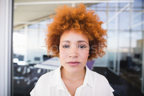 Stockfoto: Portret · zakenvrouw · haren · kantoor