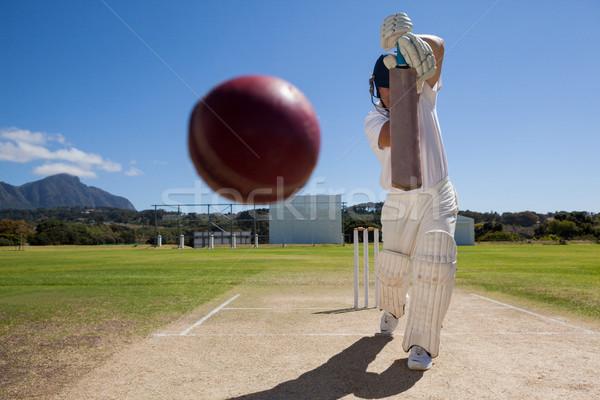 Teljes alakos játszik krikett pálya kék ég napos idő Stock fotó © wavebreak_media