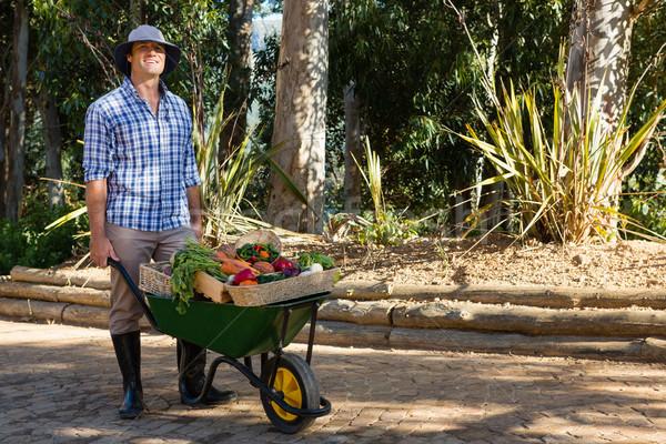 Farmer holding fresh vegetables in wheelbarrow Stock photo © wavebreak_media