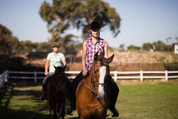 Females horseback riding on field Stock photo © wavebreak_media