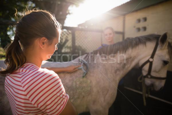 друзей очистки лошади сарай женщины Сток-фото © wavebreak_media