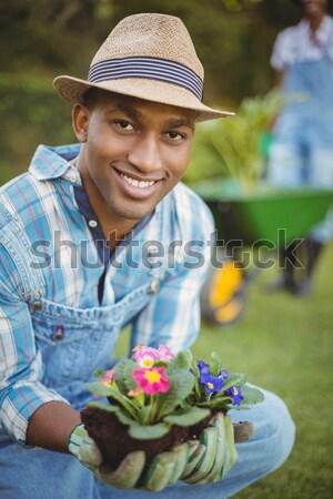 Senior man holding crate of fresh vegetables in garden Stock photo © wavebreak_media