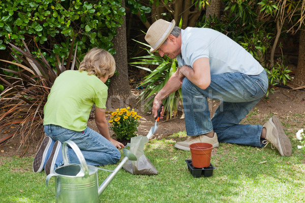 Grandfather with his grandson working in the garden Stock photo © wavebreak_media