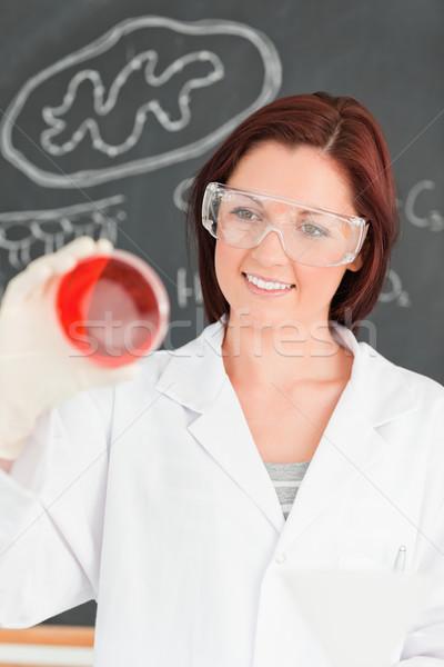 Portrait of a beautiful woman looking at a petri dish in a classroom Stock photo © wavebreak_media