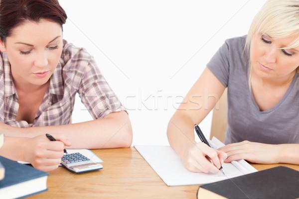 Zwei ziemlich Studenten Lernen Tabelle Gesicht Stock foto © wavebreak_media